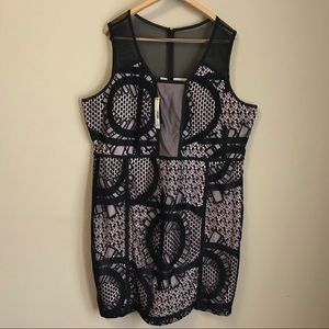 NWT Metaphor lace Cocktail Dress 22